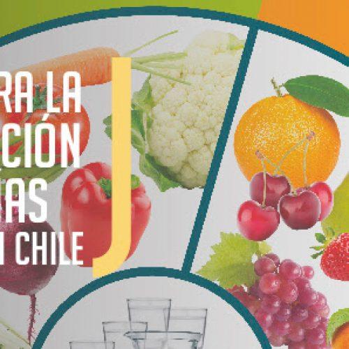 Actualízate! Curso de Desafíos para la Implementación de las Guías Alimentarias en Chile