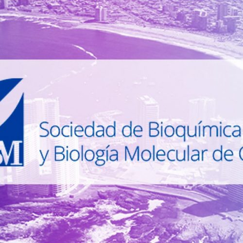Pre-curso: Affinity measurements by capillary electrophoresis and force spectroscopy techniques