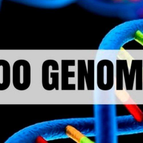 La Lógica De Los Genomas