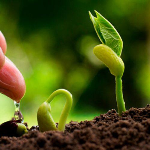 II Simpósio Latino-Americano sobre Bioestimulantes na Agricultura e IX Reunião Brasileira sobre Indução de Resistência em Plantas a Patógenos