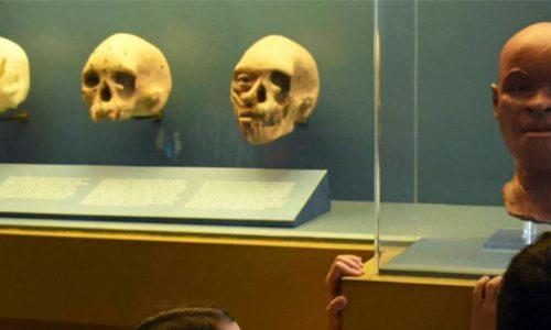 La ciencia perdida en el incendio del Museo Nacional de Brasil