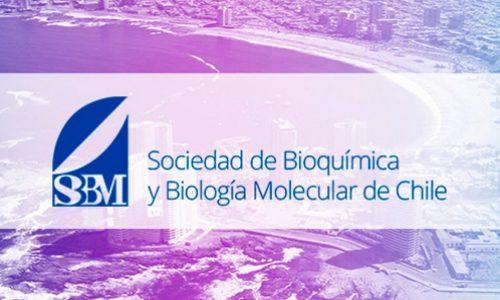 Para revisión de Librillo y Libro de resúmenes de la XLI Reunión Anual de la Sociedad de Bioquímica