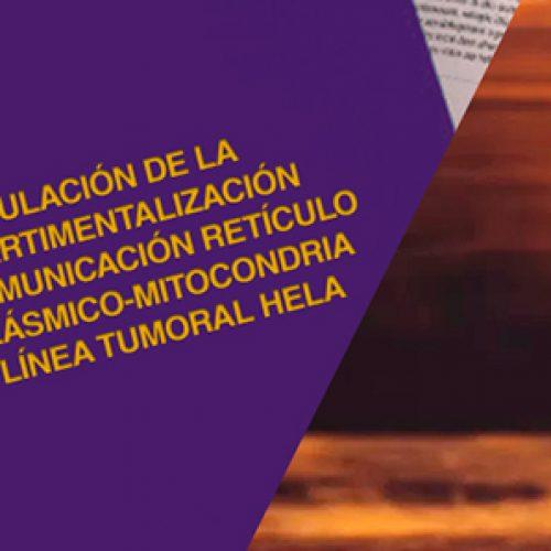 Tesis doctorado Roberto Bravo 2015, revisar en historia