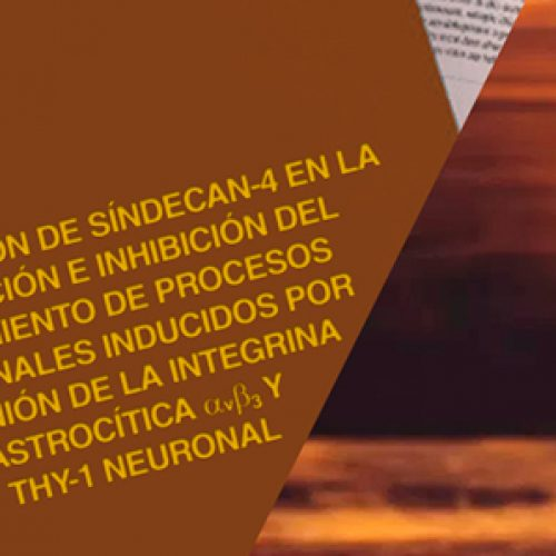 Thesis PhD Francesca Burgos 2017, review in history