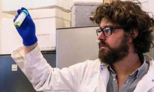 Crean en Chile 'tejido verde' capaz de regenerar la piel humana
