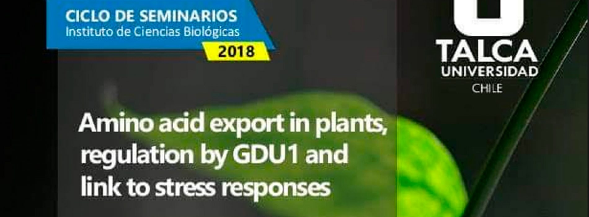 Ciclo de seminarios – Amino acid export in plants, regulation by GDU1 and link to stress responses