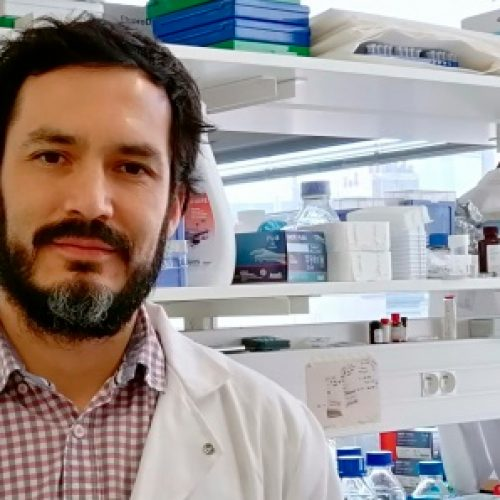 The Chilean researcher whose work was home of Nature and which will lead its own laboratory in Paris