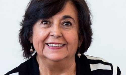 Professor Cecilia Hidalgo is the new President of the Chilean Academy of Sciences