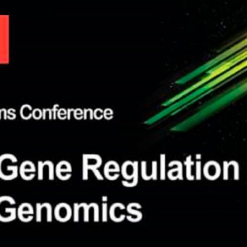 "II Molecular Biosystems Conference ""Eukaryotic Gene Regulation and Functional Genomics"""