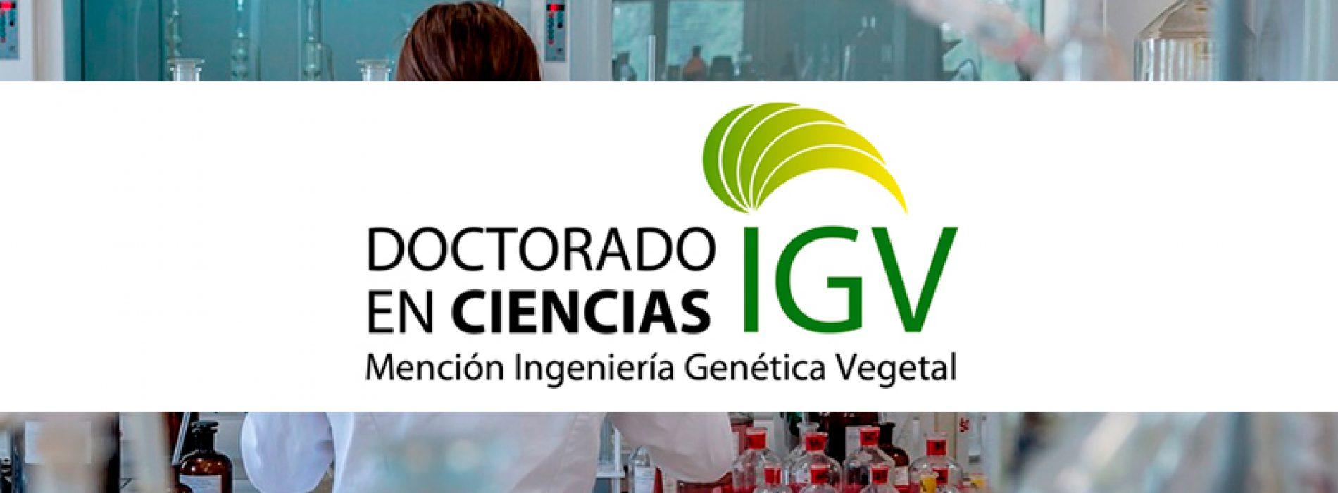 Seminar Dra. Maria Ines Barria C. – Universidad de Concepción