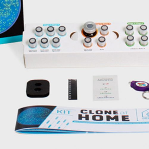 Launch of the first kit in the world that allows you to genetically modify bacteria at home