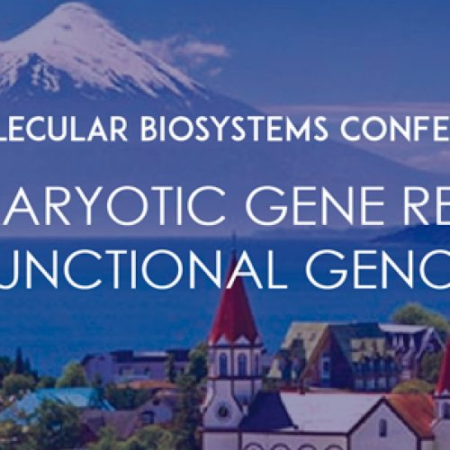 II Molecular Biosystems Conference Eukaryotic Gene Regulation and Functional Genomics