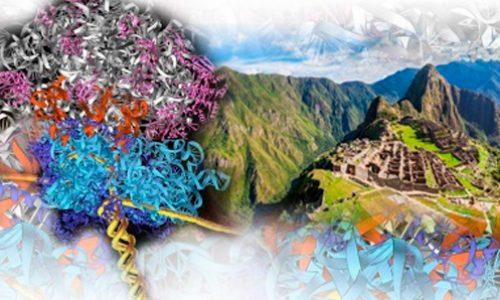 Curso 2019 del Posgrado Latinoamericano de Biofísica