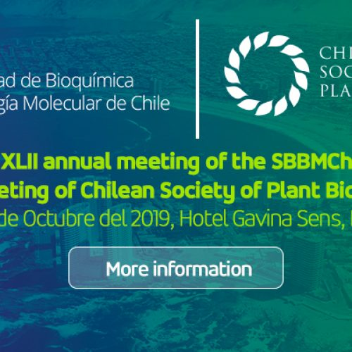 XLII annual meeting of the SBBMCh 2019