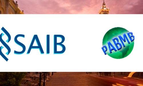 Joint LV Annual SAIB Meeting and XIV PABMB conference
