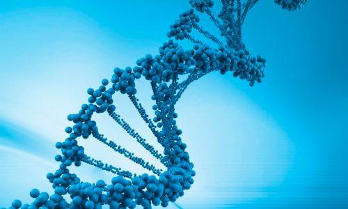 7ma Versión Curso de Bioinformática: Intensivo en R/Bioconducor y Cytoscape