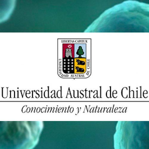 Doctorado en Ciencias, Mención Biología Celular y Molecular – Universidad Austral de Chile