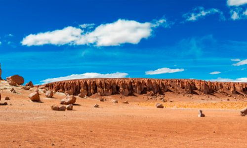 Microbial life in the atacama desert – A martian place