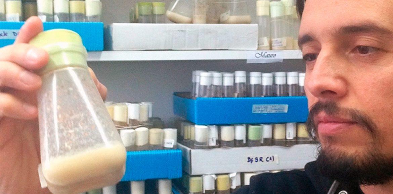 Con moscas de 2 milímetros buscan causas genéticas del Parkinson en Latinoamérica