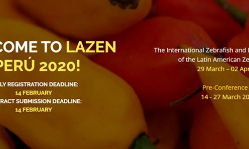 Deadline extension: VI LAZEN Meeting 2020