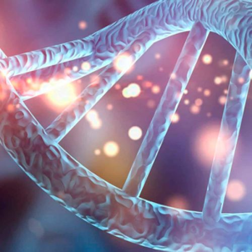 Científicos desarrollan genoma que se puede autorreplicar