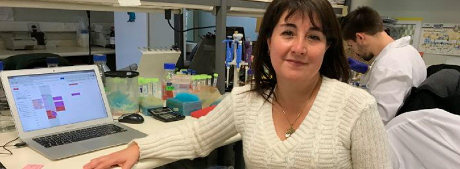 Chilenas descubren molécula que podría combatir epilepsia sin tratamiento