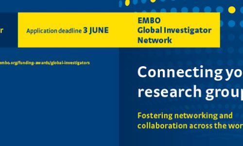 EMBO Global Investigator Network – Applications open!