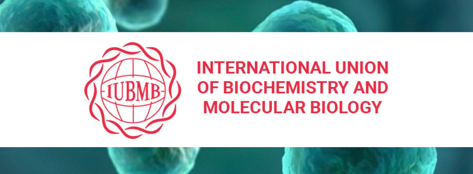 International Union of Biochemistry and Molecular Biology (IUBMB)