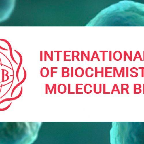 International Union of Biochemistry and Molecular Biology (IUBMB)