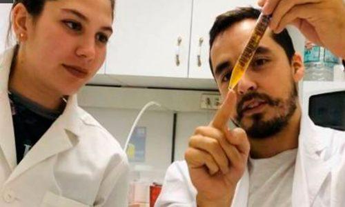 Especialista en genética de levaduras explica cómo se pasa de cerveza a alcohol gel