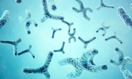 Uso combinado de single cell CRISP screening y  Perturb-seq para evaluar el rol de un grupo de genes