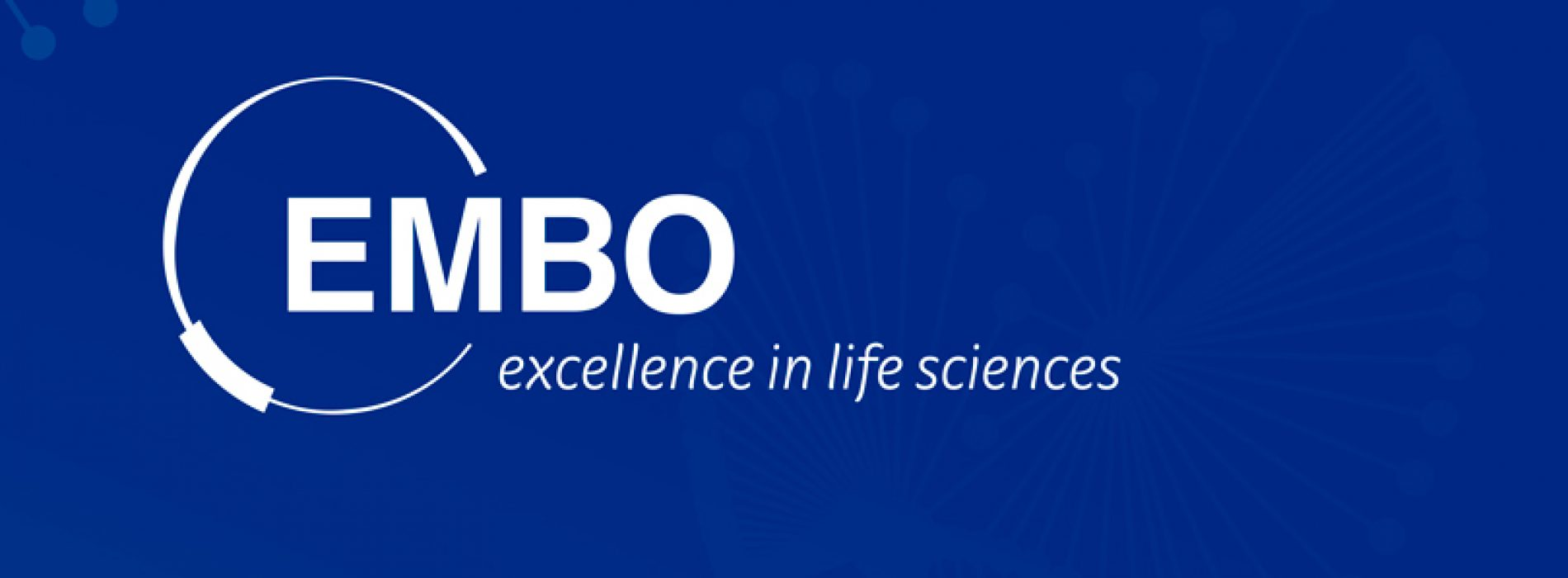 EMBO funding opportunities for life scientists in Chile