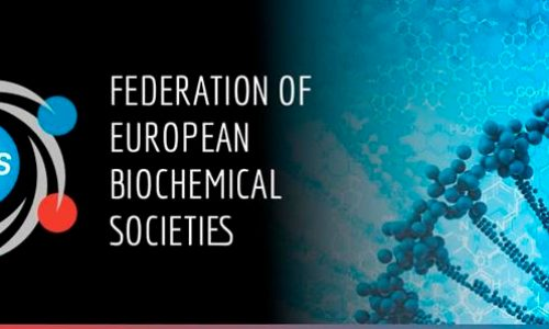 FEBS Newsletter June 2020 – Journals, Network – COVID