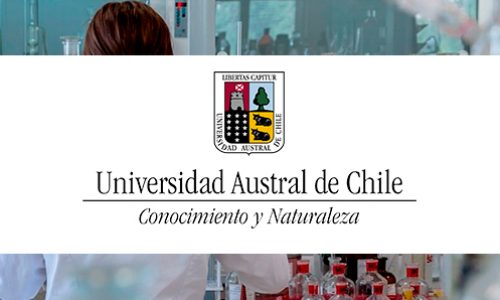 Cargos académicos Universidad Austral de Chile