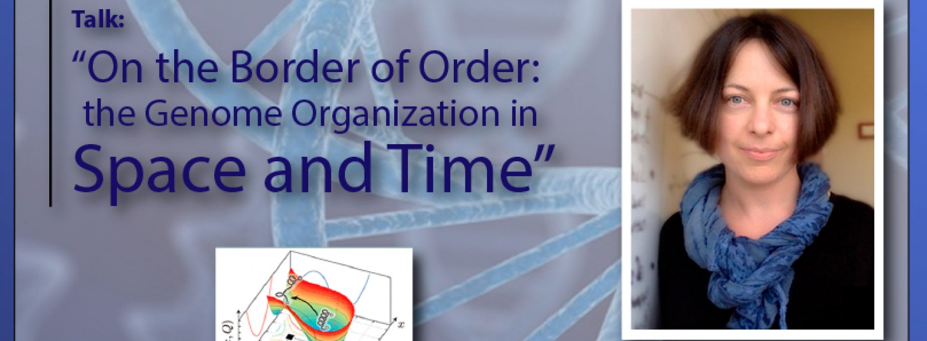 "Talk: ""On the Border of Order: the Genome Organization in Space and Time"""