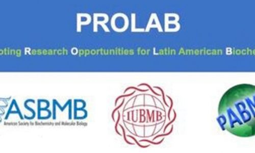 Promoting Research Opportunities for Latin American Biochemists