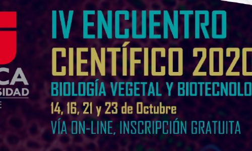 IV Scientific Meeting 2020 - University of Talca