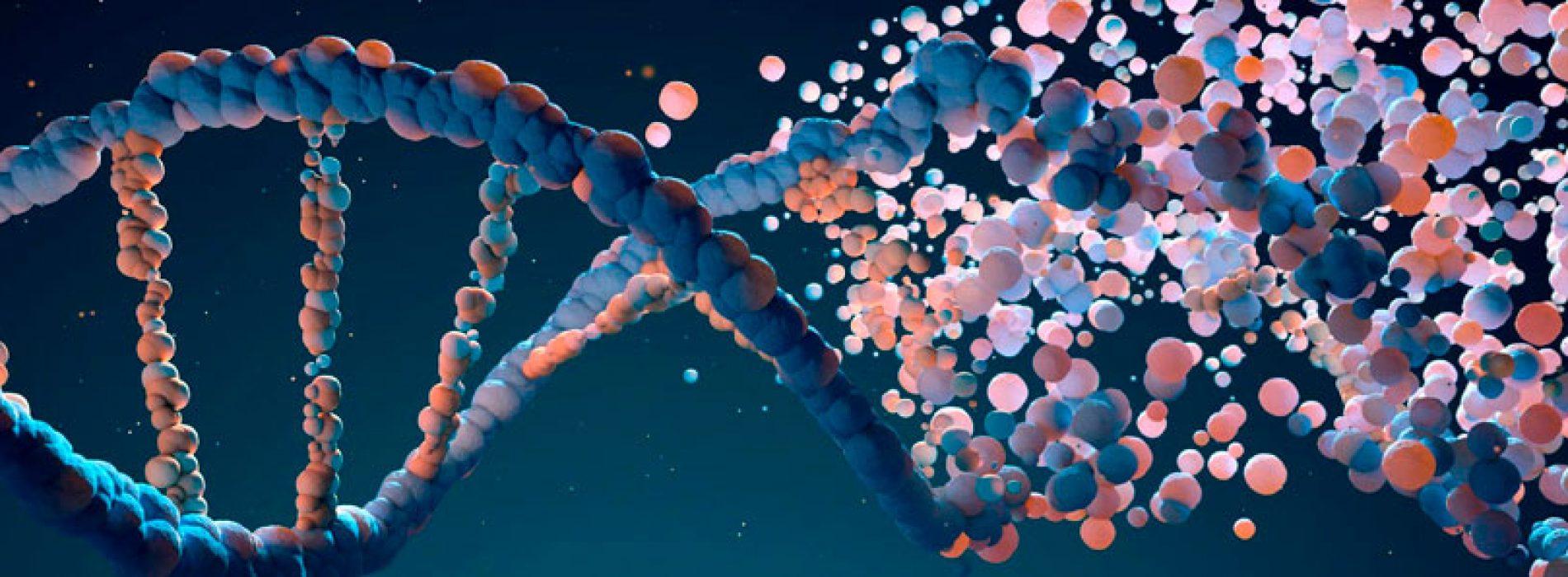 """Seminario """"Enfermedades crónicas y envejecimiento, o cuando nuestra (epi)genética no se ajusta al ambiente"""""""