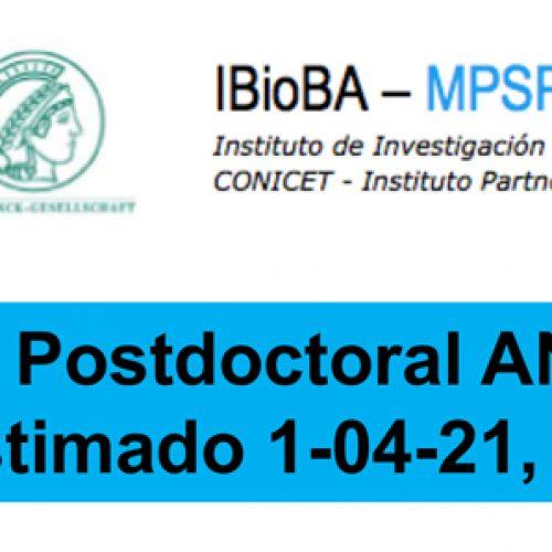 Beca Postdoctoral ANPCyT inicio estimado 1-04-21, dos años
