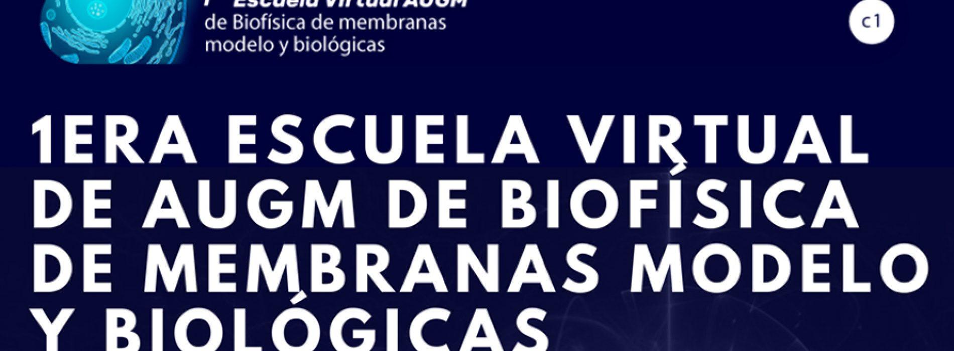 1ra Escuela Virtual AUGM de Biofísica de Membranas Modelo y Biológicas