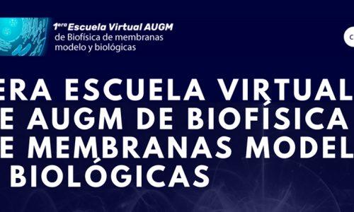 1st AUGM Virtual School of Model and Biological Membrane Biophysics
