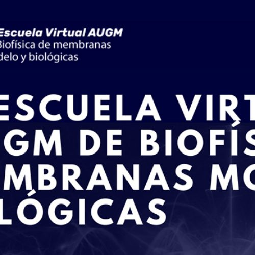1st AUGM Virtual School of Model and Biological Membrane Biophysics