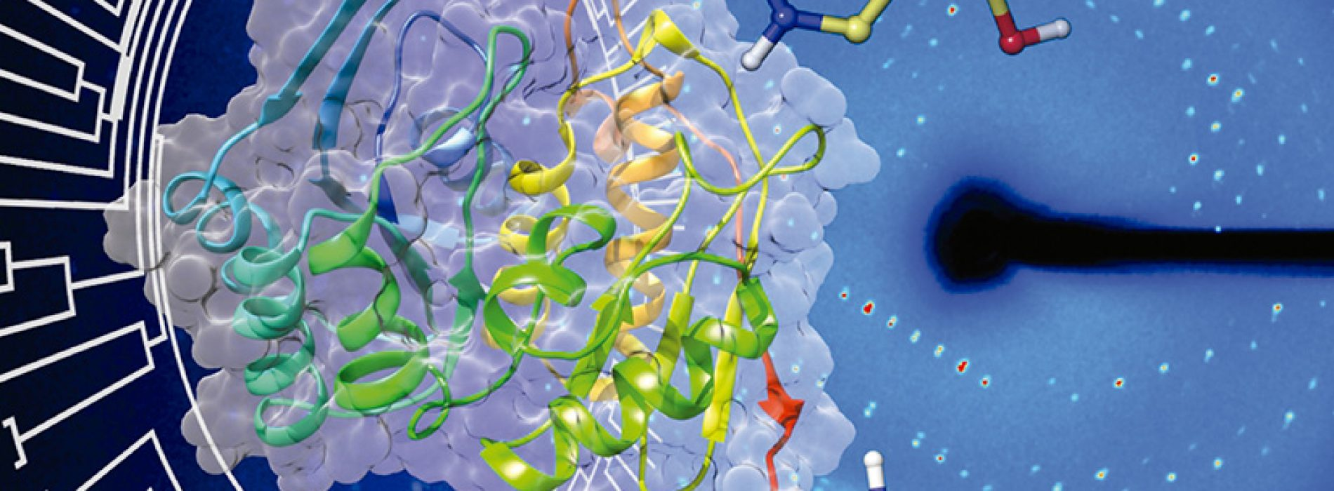 Journal Protein Science highlights on its April cover publication of members of SBBMCH