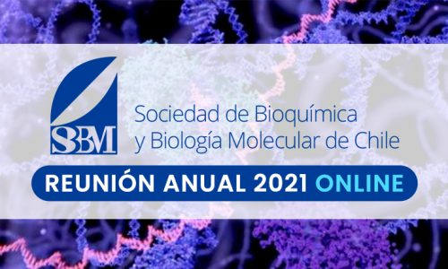 Idioma de presentaciones orales – Reunión Anual SBBMCh 2021