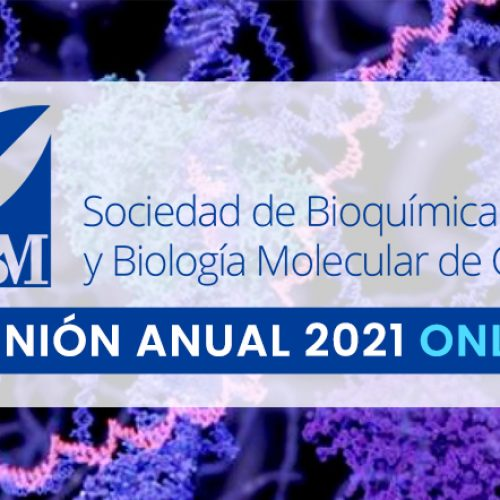SBBMCh 2021 Online Annual Meeting