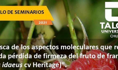 """Ciclo de seminarios """"En busca de los aspectos moleculares que regulan la rápida pérdida de firmeza del fruto de frambuesa (Rudus idaeus cv Heritage)"""