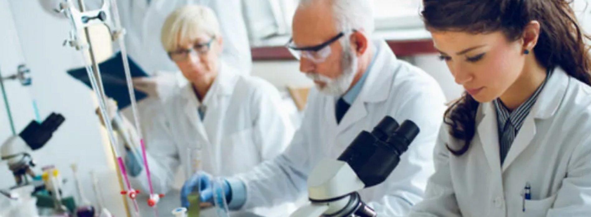 Posiciones postdoctorales en la Universidad de California Davis, en la temática de fijación de nitrógeno atmosférico en plantas