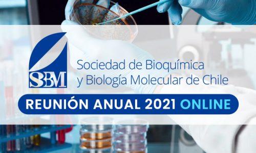 Se extiende plazo para recibir comunicaciones libres – Reunión Anual SBBMCh 2021 Online
