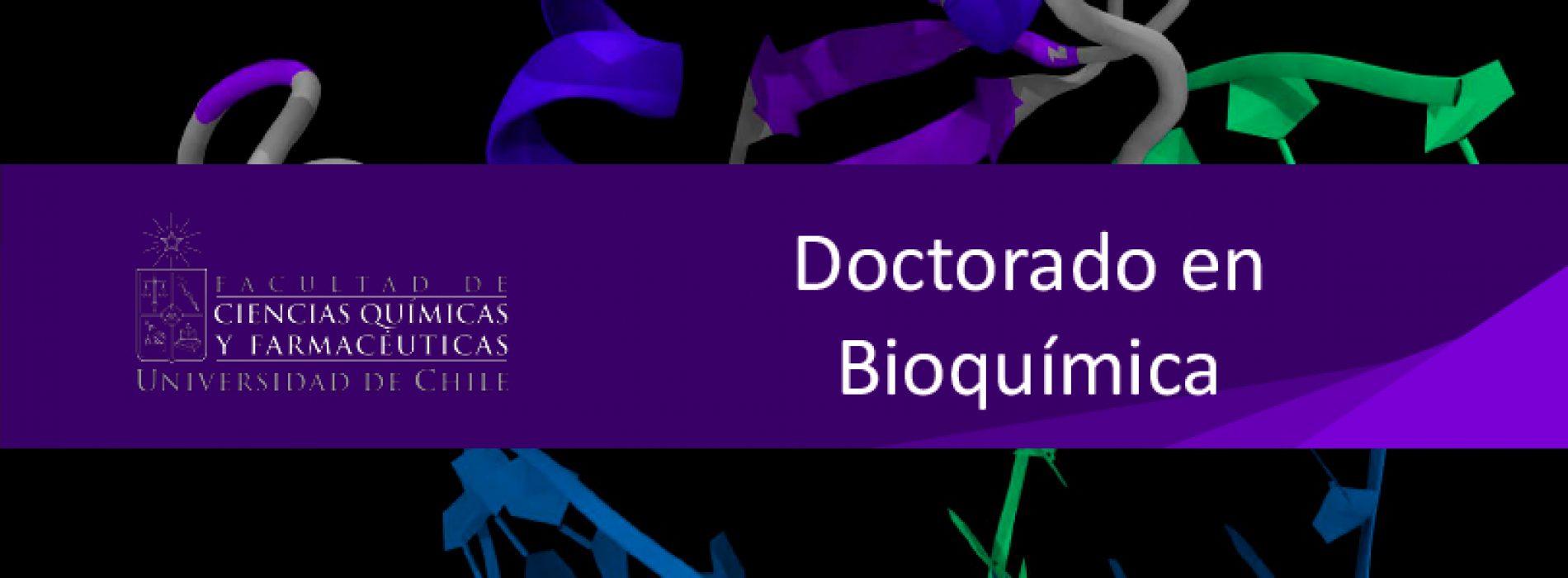 Doctorado en Bioquímica – Facultad de Ciencias Químicas y Farmacéuticas de la Universidad de Chile