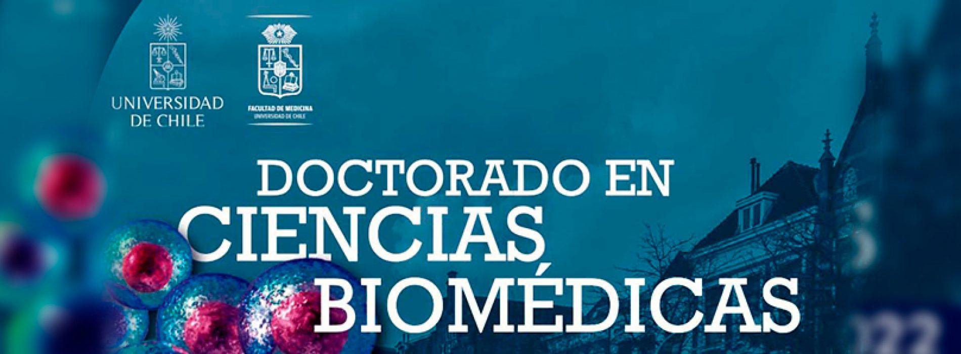 Doctorado en Ciencias Biomédicas – Admisión 2022 – Universidad de Chile